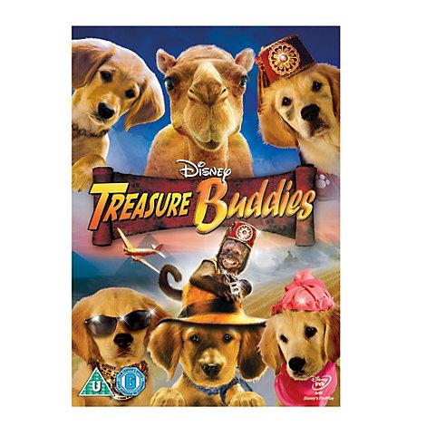 Treasure Buddies DVD