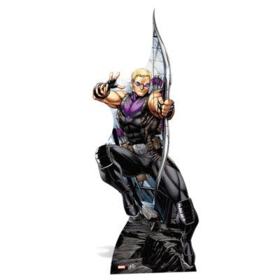 Silhouette Hawkeye