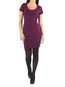 Cap Sleeve Animal Print Sweater Dress
