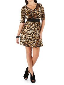 Animal Print Elbow Sleeve Banded Waist Dress