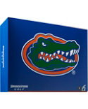 Bridgestone e6 Straight Distance NCAA University of Florida Golf Balls - 12 Pack