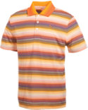 PUMA Roadmap Stripe Polo