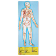 Melissa & Doug® 100-pc. Human Body Science Puzzle