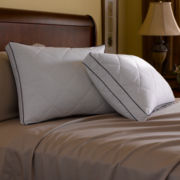 Pacific Coast®  Quilted Eurofeather Pillow
