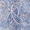 Vista Blue Paisley