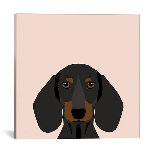Icanvas Dachshund I Canvas Art
