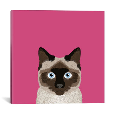 jcpenney.com | Icanvas Siamese Canvas Art