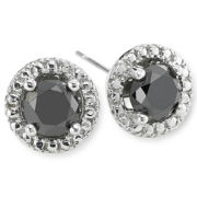1 CT. T.W. Color-Enhanced Black Diamond Stud Earrings