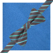 JF J. Ferrar® Gella Stripe Pre-Tied Bow Tie & Pocket Square Set