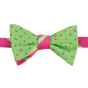 IZOD® Stripe and Dot Reversible Self-Tie Bow Tie