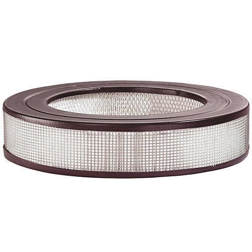 Honeywell True HEPA Replacement Filter
