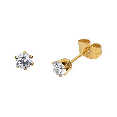 Cubic Zirconia 4mm Stainless Steel and Yellow IP Stud Earrings