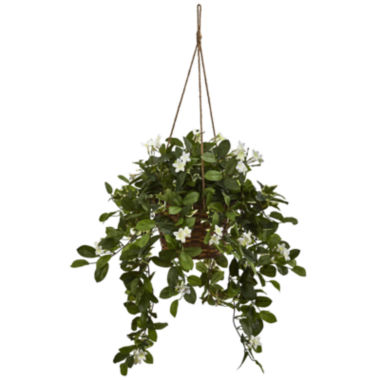 jcpenney.com | Mixed Stephanotis Artificial Plant