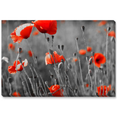 jcpenney.com | Red Poppies Canvas Wall Art