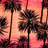 Palm Tree Play Pch
