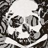 Skull/leaf Print