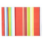 Cabana Stripe Set of 4 Placemats