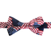 American Lifestyle Allover Flag Pre-Tied Bow Tie