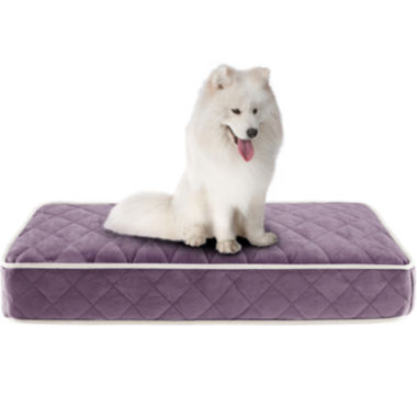 jcpenney.com | Sleep Philosophy Tavis Quilted Memory Foam Orthopedic Napper Dog Bed