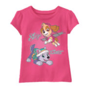 Paw Patrol Skye Aqua Short-Sleeve Tee - Toddler Girls 2t-4t