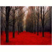 Trees Red Canvas Wall Art