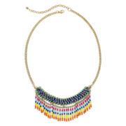 Arizona Multicolor Seed Bead Fringe Necklace