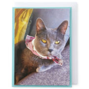 MarthaCelebrations™ Birthday Card – Cat