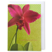 MarthaCelebrations™ Mother's Day Card – Flower