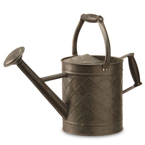 National Tree Co. Spring Watering Can