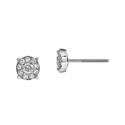 1/2 CT. T.W. Diamond 14K White Gold Flower Post Earrings