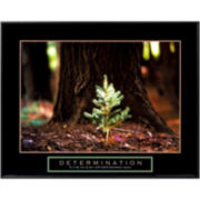 Determination Little Pine Framed Print Wall Art