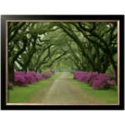 A Beautiful Pathway Framed Photo Wall Art