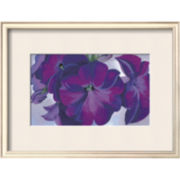 Petunias, c.1925 Framed Print Wall Art
