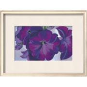 Art.com Petunias, c.1925 Framed Print Wall Art