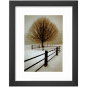 Solitude Framed Print Wall Art