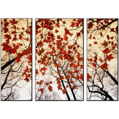 jcpenney.com | Art.com Branches and Red Maple Leaves Photo Wall Art