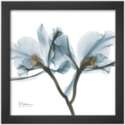 Orchids in Blue Framed Print Wall Art
