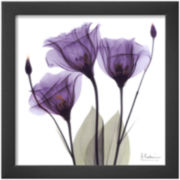 Art.com Royal Purple Gentian Trio Framed Print Wall Art
