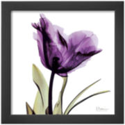 Royal Purple Parrot Tulip Framed Print Wall Art