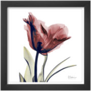 Single Tulip in Red Framed Print Wall Art