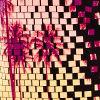 Black Tile Palm