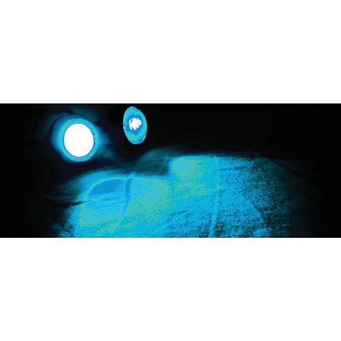 Race Sport Inc. RS-EE-BLUE Eagle Eye LED Custom Lights (Blue)