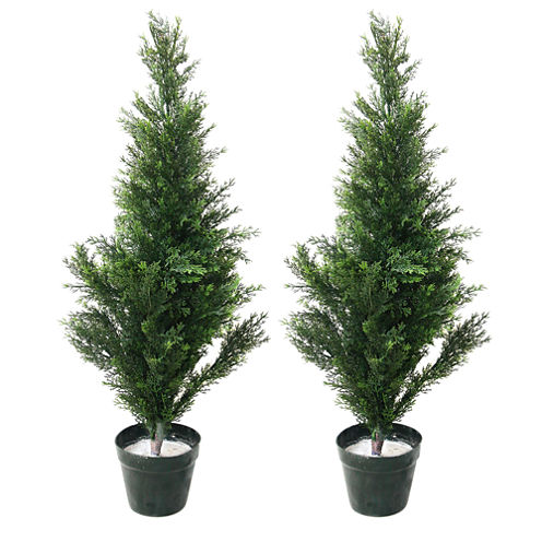 """Set Of 2 Potted 34"""" Cedar Topiary Trees"""