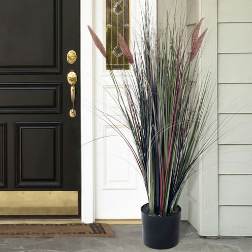 4' Potted Ornamental Cattail Grass