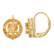 Genuine Citrine 14K Gold Over Silver Leverback Earrings