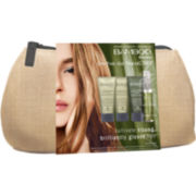 Alterna® Bamboo Shine Experience Hair Care Kit