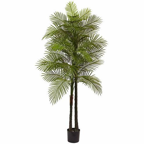 7' Double Robellini Palm Tree Uv Resistant