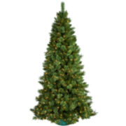 9' Pre-Lit Sheridan Pine Cashmere-Style Clear Lights Christmas Tree