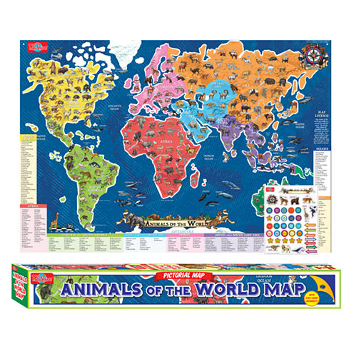 Educational Posters Discovery Toy