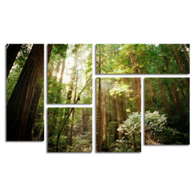 jcpenney.com | Muir Woods 6-Panel Canvas Wall Art Set